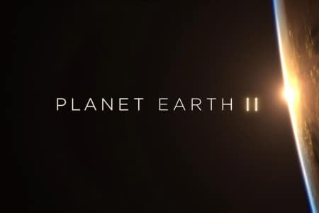 planet eart_interview