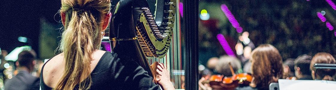 titanic_live_krakow_harp_fmf_11222
